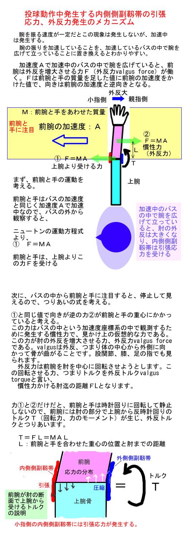 内側側副靱帯と外反力発生メカニズム.jpg